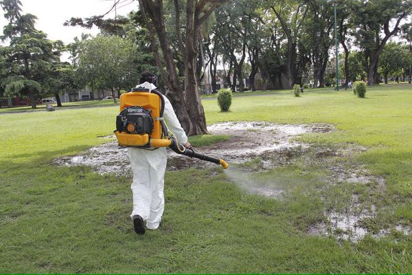 dengue-fumigacion