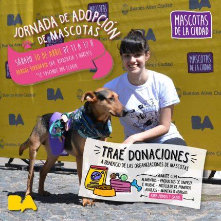 mascotas-adopcion-30-04-16
